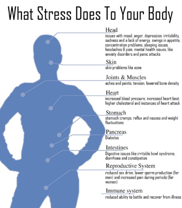 Stress diagram